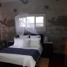 Emoyeni Dive Lodge @ Sodwana Bay 2020 (4)